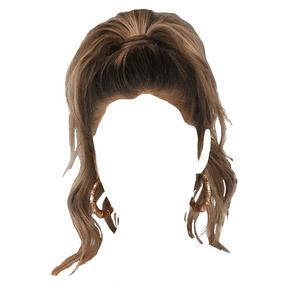 Brown Hair High Ponytail