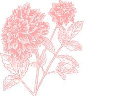 light pink flower - Google Search
