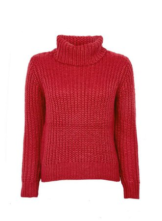 Petite Cerise Chunk Roll Neck Jumper | Dorothy Perkins