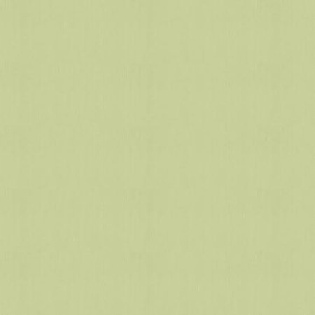 olive green background
