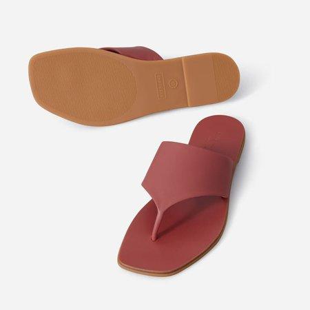 Women's Leather Thong Sandal   Everlane rust