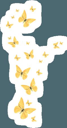 butterfly gold yellow freetoedit 귀여운 picsart cute kawai...