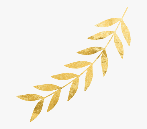 Gold Leaves Png -right Gold Leaf - Gold Leaves No Background, Transparent Png , Transparent Png Image - PNGitem