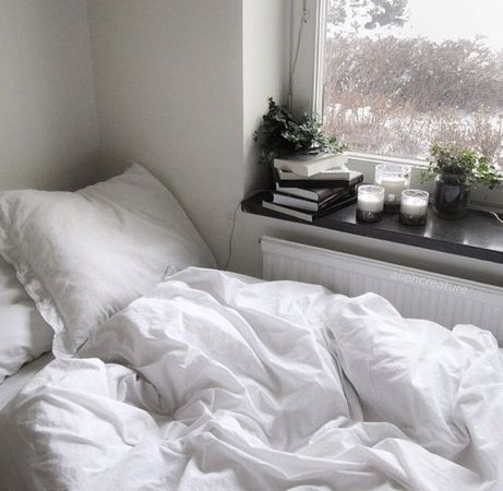 bed, blanket, books, cacti, cactus, candles, grunge, hipster, j, pillow, plants, tumblr, white, cacit | aesthetic rooms in 2019