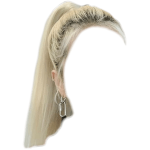 BLONDE HAIR PNG PONYTAIL