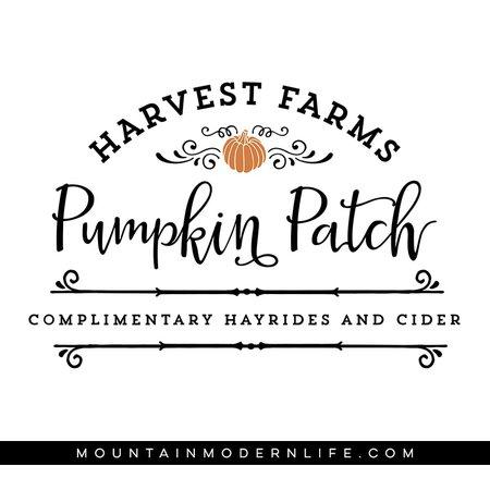 Pumpkin Patch Text