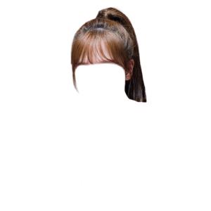 brown hair bangs png ponytail