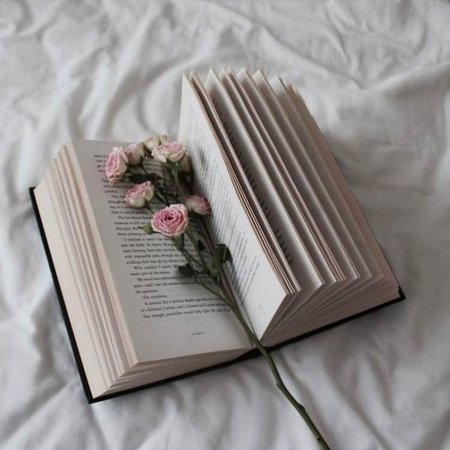 book aesthetic white
