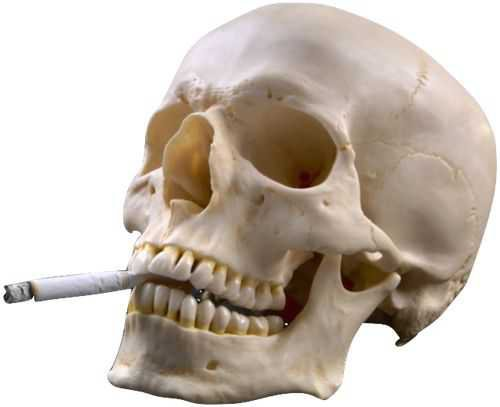 skull smoking a cigarette