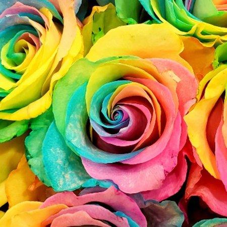 Pastel rainbow - Google Search