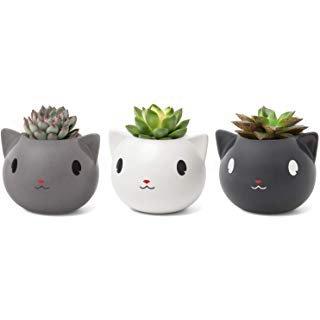 Amazon.com : LA JOLIE MUSE Succulent Planter Pots - Cute Ceramic Animal Set, Cat Cow Elephant Fox Owl, Christmas Home Decor Gift : Garden & Outdoor