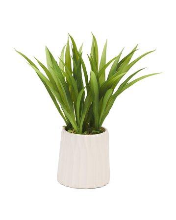 15in Grass In Ceramic Pot - Living Room - T.J.Maxx