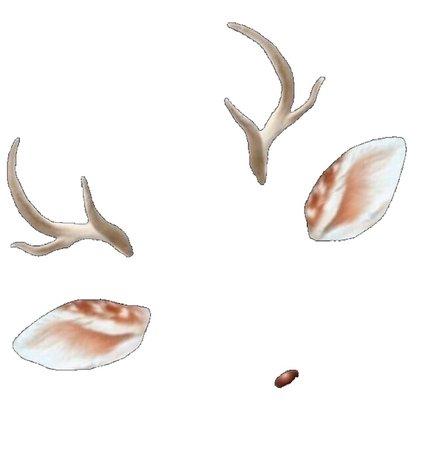 deer snapchat filter (png)