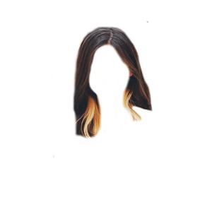 Short Brown Hair PNG Blonde/Orange Underneath Tips/Streaks