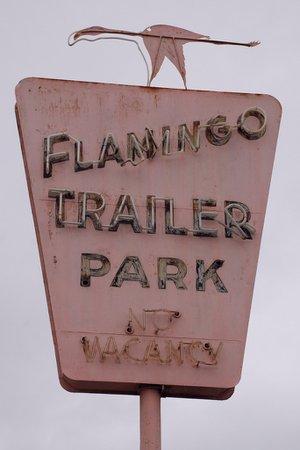 flamingo trailer park, florida