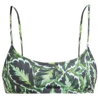 Stella Leaf Print Bikini Top - Womens - Green Multi