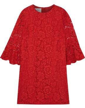 Fluted Cotton-blend Corded Lace Mini Dress
