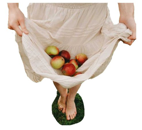 Apple Orchard Aesthetic png