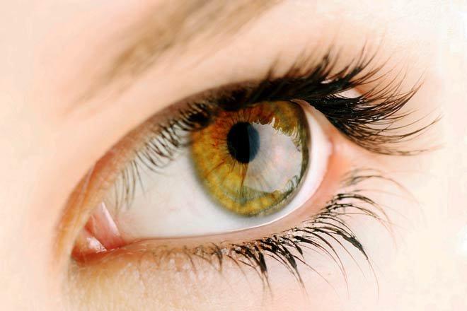 eye-color-hazel-g-330x220@2x.jpg (660×440)