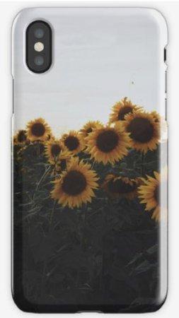sunflower case 3
