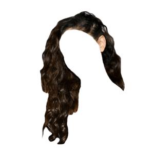 Black Brown Hair Small Braids PNG