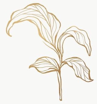 Gold Embroidery PNG