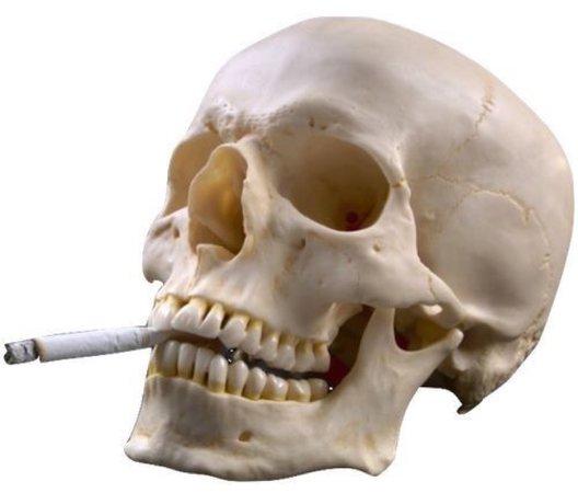 skull w cig