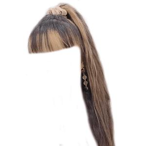 Brown Hair Blonde Streaks PNG Ponytail Scrunchie