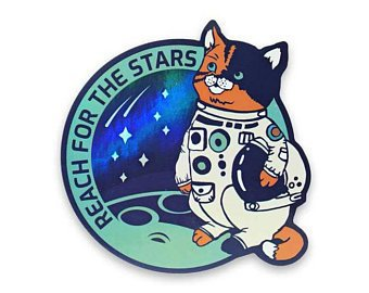 Cat patch Astronaut Patch Astronomy Patch Mission Patch | Etsy