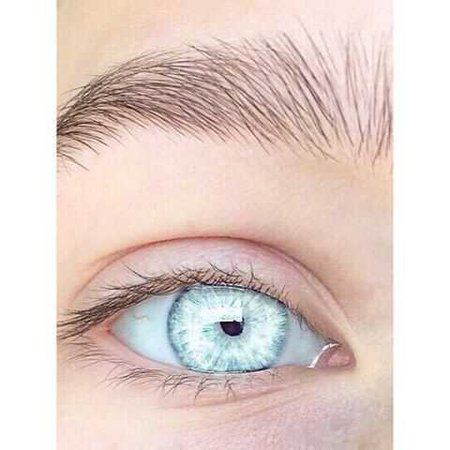 blue-eyes-clipart-one-eye-2.jpg (480×480)