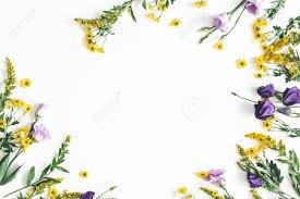purple lay flat spring - Google Search