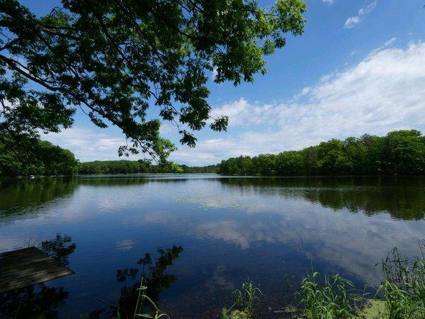 N5284 Golden Pond Lane, Stone Lake, WI 54876 | MLS: 4962745 | Edina Realty