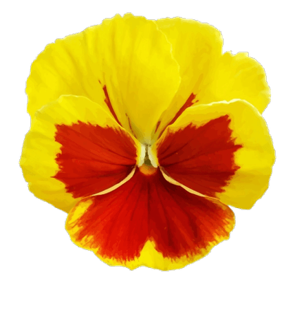 yellow red png filler