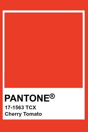 cherry tomato pantonr - Google Search