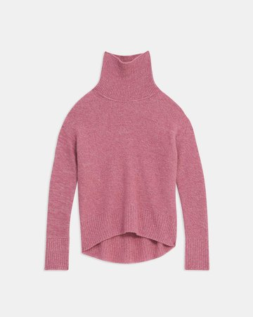 Karenia Turtleneck Sweater in Cashmere