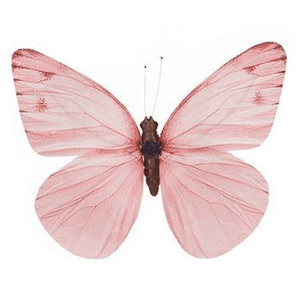 mauve butterfly png filler