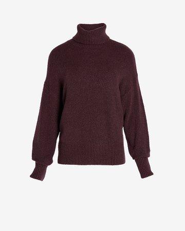 Ribbed Turtleneck Sweater | Express