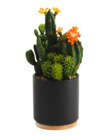 11.5in Cactus In Pot - Home - T.J.Maxx