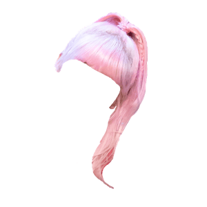 pink hair bangs png ponytail