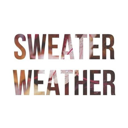 sweater weather polyvore quote - Google Search