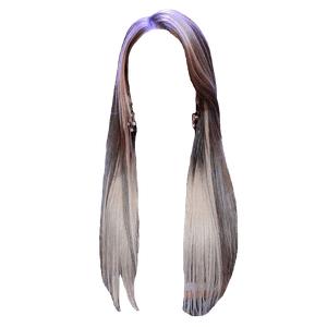 BROWN HAIR WITH BLONDE BANGS PNG