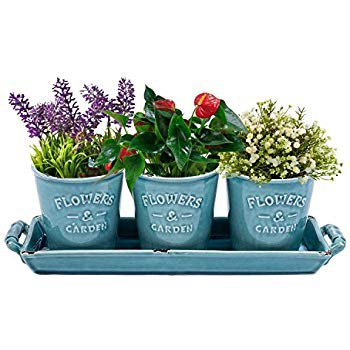 Amazon.com : Vencer Country Rustic Turquoise Ceramic Succulent Planters - Flower Pots & Handled Display Tray, Office Desktop Potted Stand, Home & Office Decor Accent, Set of 3, VF-016 : Garden & Outdoor
