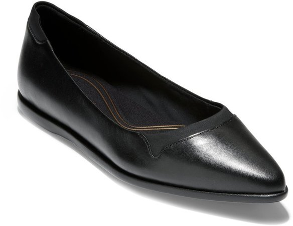 Grand Ambition Pointy Toe Flat