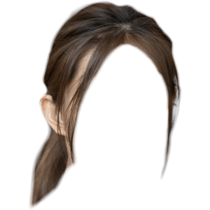 Brown Hair Ponytail PNG
