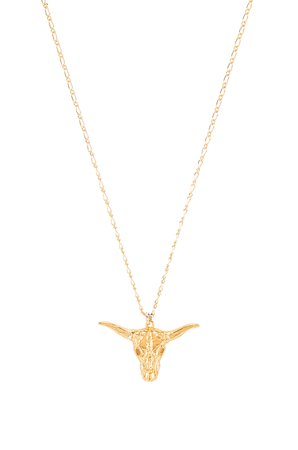 Big Horn Necklace