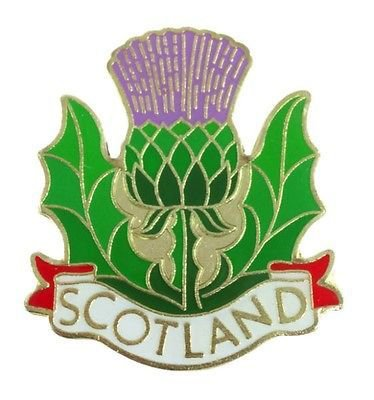 Scottish Thistle Metal Pin Badge with Scotland Banner