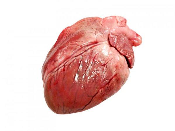 pig-heart.jpg (700×526)