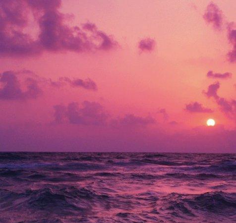 Pink Orange Sunset Aesthetic Background