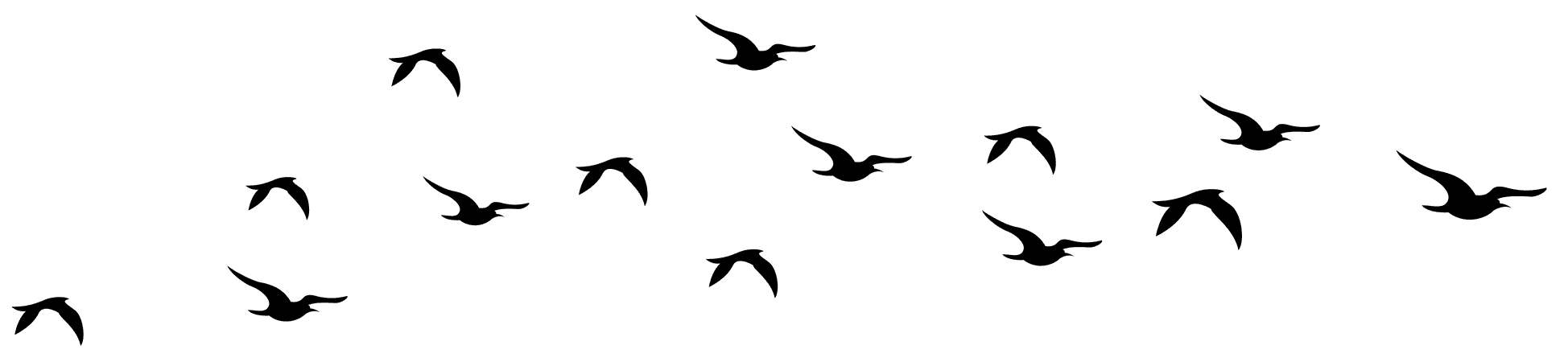 Flying Bird Png | Free download best Flying Bird Png on ClipArtMag.com