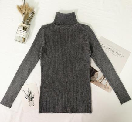 High Elastic Turtleneck Sweaters 2020 Spring Autumn Basic warm pull femme hiver jumper jersey mujer pullover women sweater|Pullovers| - AliExpress